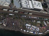 Free Seattle Hempfest celebrates freedom, health, and cannabis