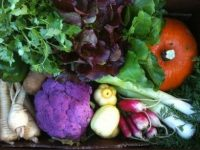 Join a CSA program to support local agriculture and get fresh produce