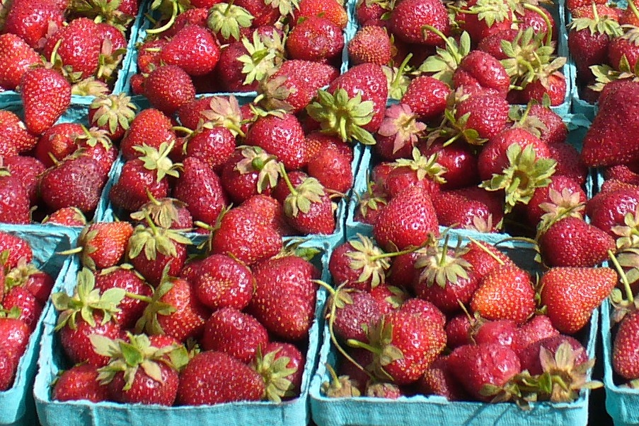 Strawberries at the farmers market photo by Carole Cancler