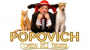 Goldstar Popovish Pet Theater