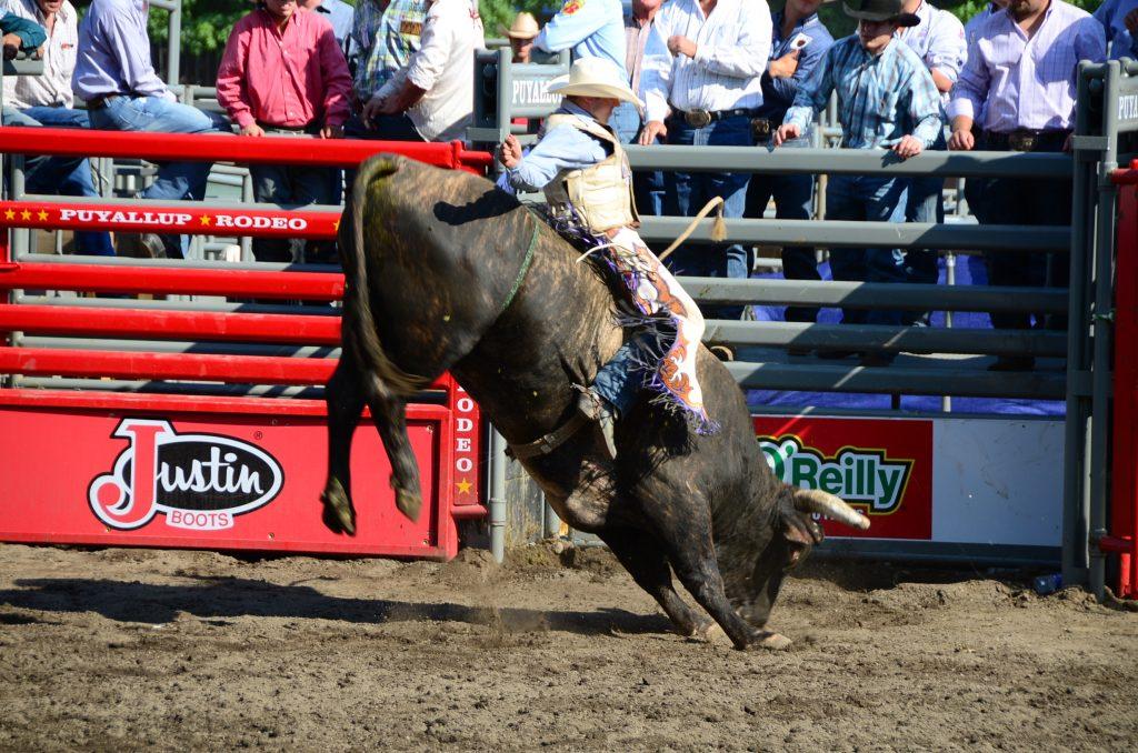 Puyallup Pro Rodeo - Photo credit Carolyn Hojem
