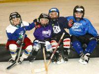 Free Try Hockey Day in Everett, Mountlake Terrace, Kirkland