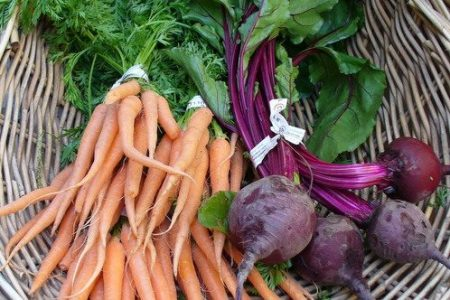 Carrots and beets (C.Cancler)