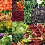 Find a farmers markets in Seattle or around Puget Sound