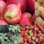 Where to find Puget Sound fresh, local and seasonal produce