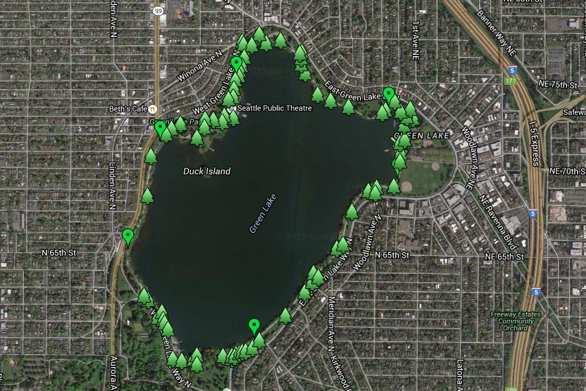 Green Lake trees map takes you on a walking tour of this beloved Seattle park