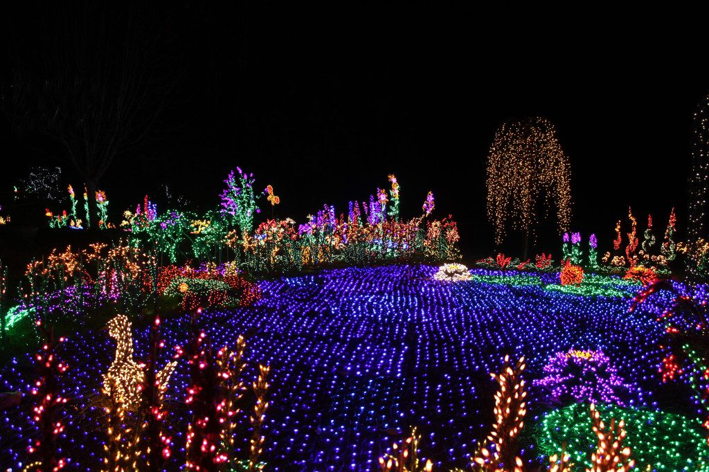 Free Bellevue Botanical Garden Greater Seattle On The Cheap