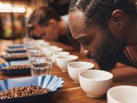 Free coffee sampling at Victrola coffee roasters cafe