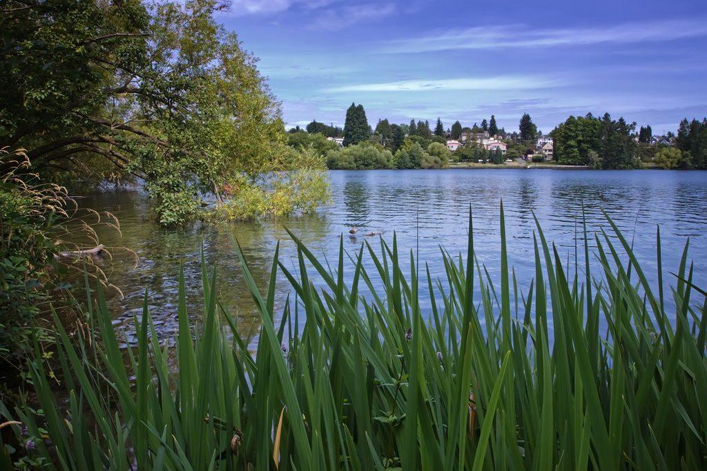 Green Lake Seattle WA 2011 photo by Steven Pavlov