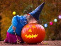 Young girl peers into a Halloween pumpkin