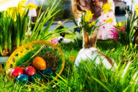 Easter egg basket and bunny