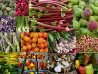 farmers market produce (C.Cancler)