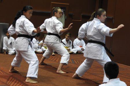Japan Fair Bellevue martial arts demonstration