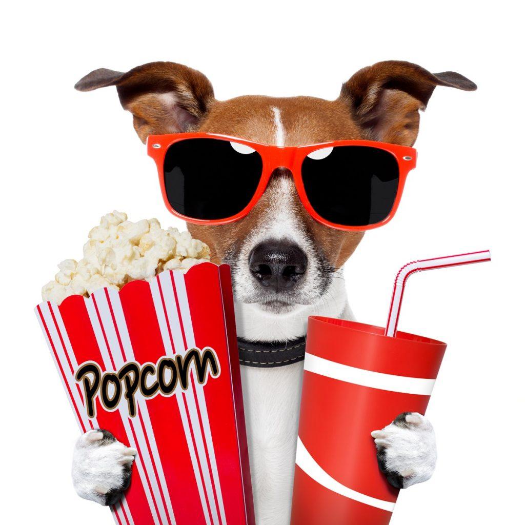 Movie popcorn and soda