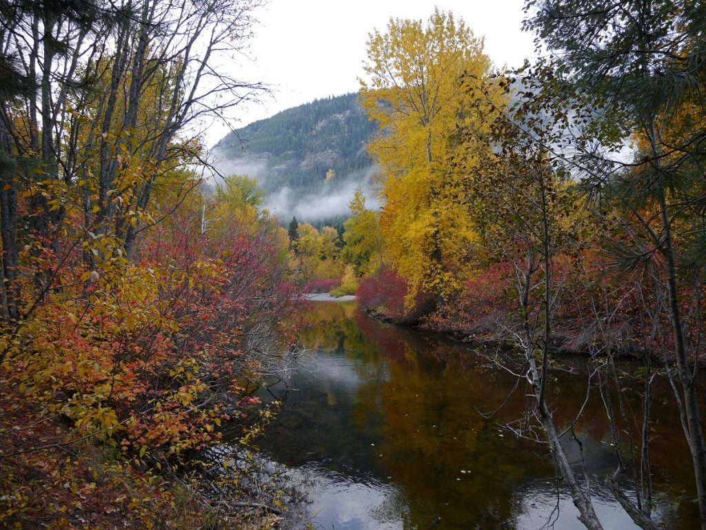 Fall color between Stevens Pass and Leavenworth photo by Brian Holsclaw (CC2)