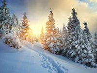 Winter landscape - DepositPhotos.com