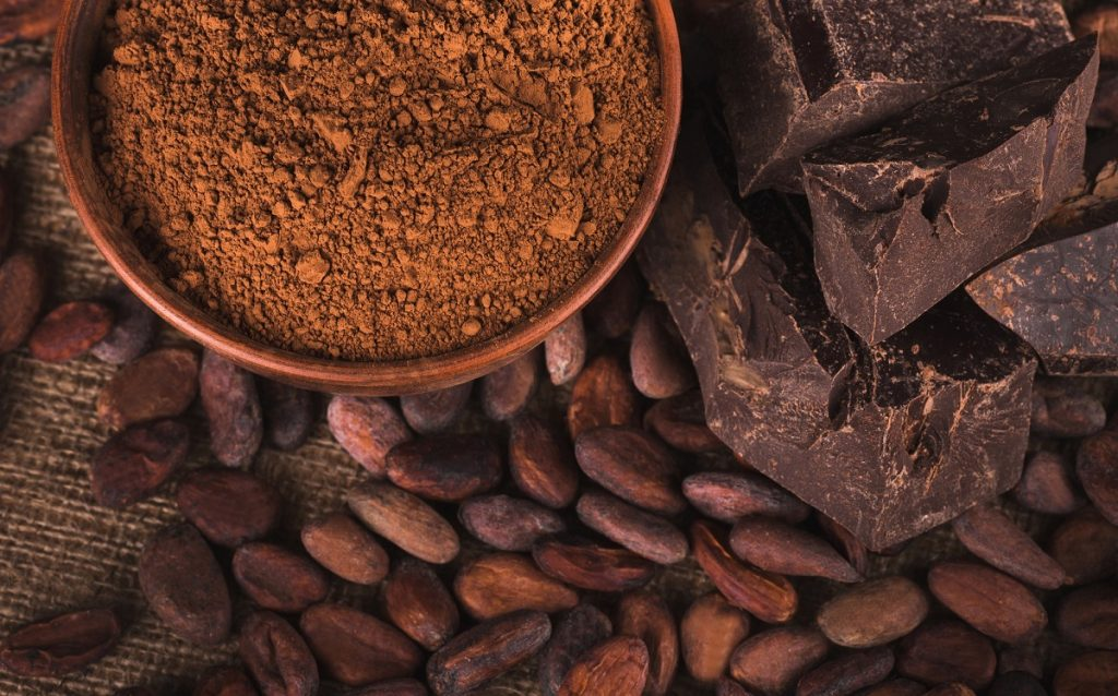 Raw cacao beans, cocoa powder, and chocolate bars
