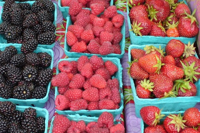 Blackberries, raspberries, and strawberries photo by Carole Cancler