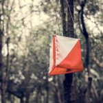 Free and cheap outdoor activity — try orienteering