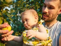 Father and child picking apples