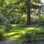 Free garden tours (and a few cheap ones)