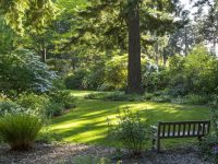 Dunn Garden Early Summer