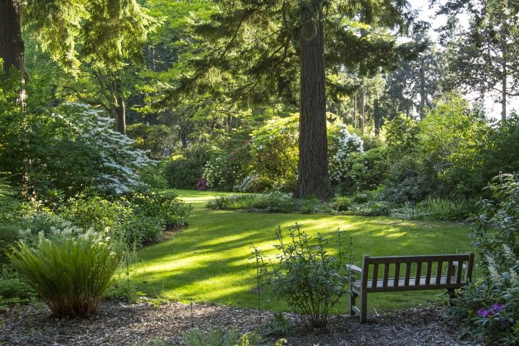 Free garden tours (and a few cheap ones) - Greater Seattle on the Cheap