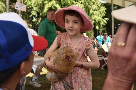 King County CHOMP food festival