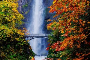 Multonomah Falls Fall Colors, Columbia River Gorge, Oregon photo by Jay Huang (CC2)