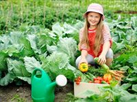 Young girl in a vegetable garden