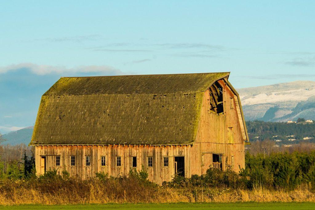 Aging Barn in Skagit Valley