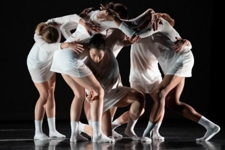 Seattle International Dance Festival 2020 image