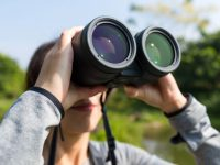 Birdwatcher with binoculars
