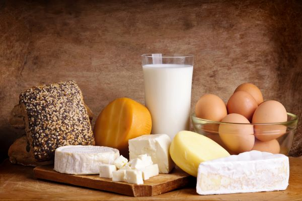 cheeses, milk, eggs, and bread