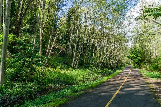 Des Moines Creek Trail