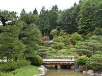 wooden bridge over a pond in Seattle Japanese Garden