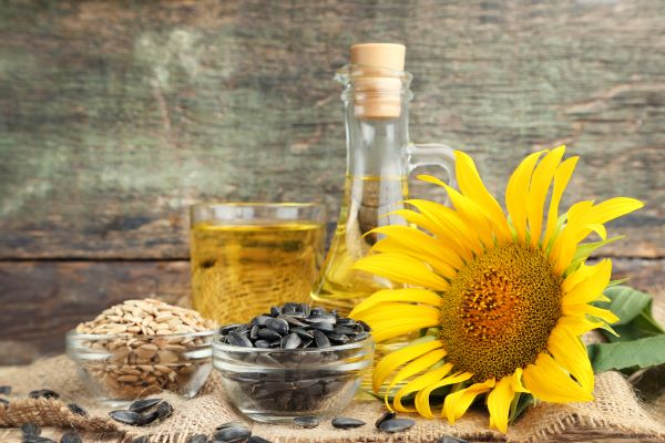Sunflower, seeds, kernels, and oil