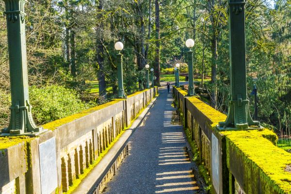 Footbridge in Washington Park Arboretum in Seattle