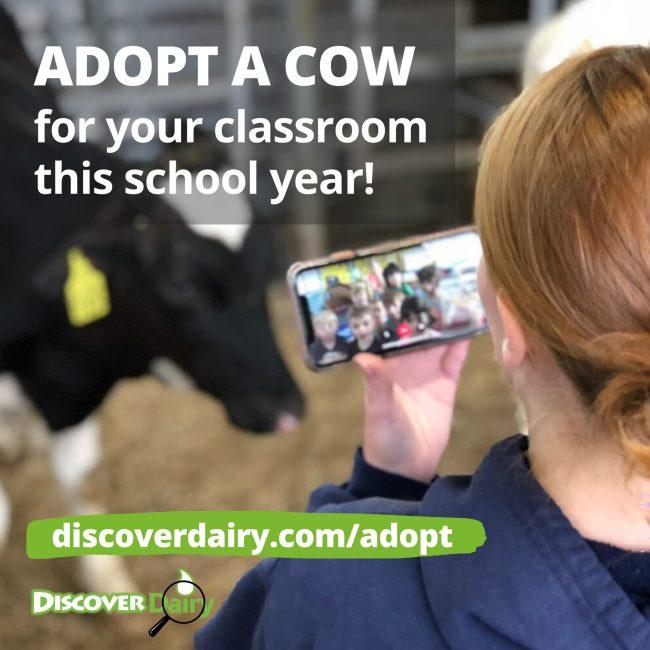 Discover Dairy Adopt-a-Cow program banner
