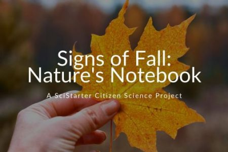 Signs of Fall - Nature's Notebook SciStarter Citizen Science Project banner