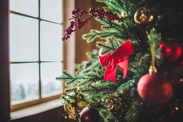 Decorated Christmas tree by the window
