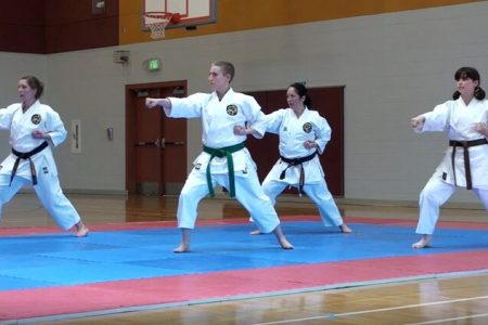 Feminist Karate Union