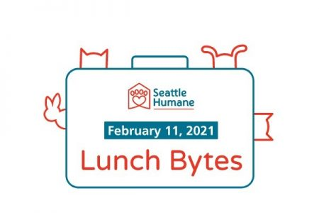 Banner for Seattle Human Society Lunch Bytes February 2021