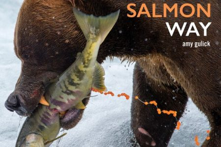Book cover for The Salmon Way by Amy Gulick