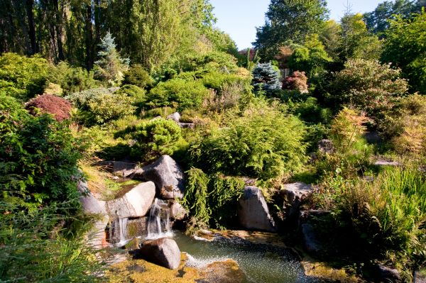 Seattle Kubota Garden