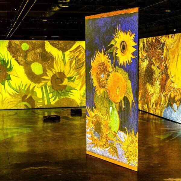 Imagine Van Gogh digital art exhibit - sunflowers