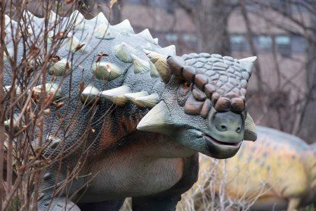 Woodland Park Zoo Dinosaur Discovery - Gastonia