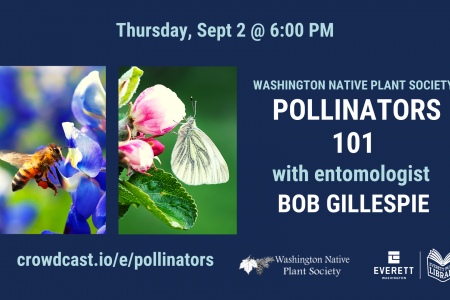 Banner for Pollinators 101 with Bob Gillespie Sept 2 2021